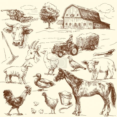 Photo for Original hand drawn farm collection - Royalty Free Image