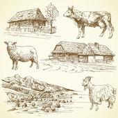 Hand drawn set - rural landscape village farm animals