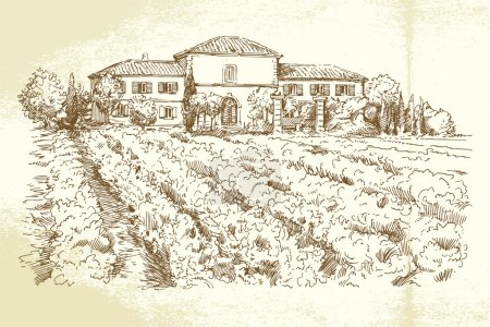 vignoble france - illustration dessiné à la main