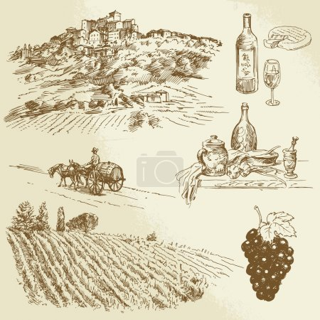 paysage italien, vignoble - illustration dessinés à la main