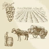 vineyard harvest farm - hand drawn collection