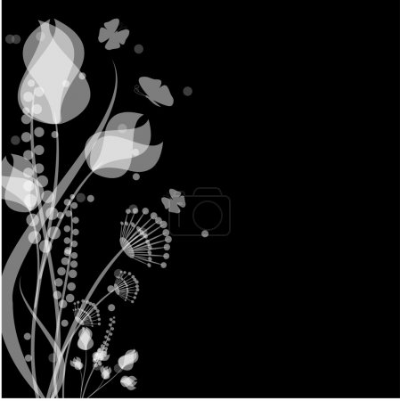 Flowers and butterflies of white color on a black background