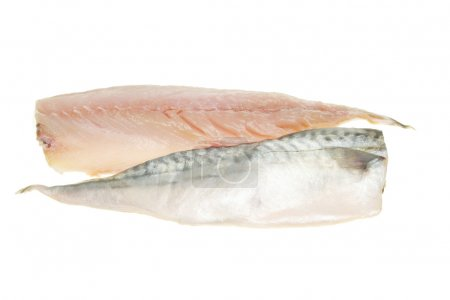 Mackerel fish fillets on white