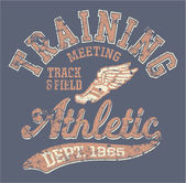 Vintage vector artwork for sportswear in custom colors grunge effect in separate layer
