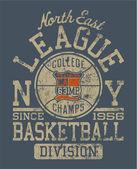Basketball college league
