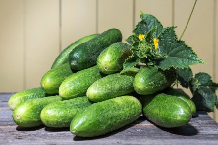 Photo for Fresh collected in the garden cucumbers lie on the old desk - Royalty Free Image