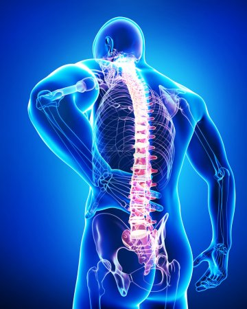 Male spine pain