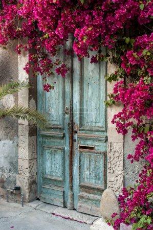 Photo pour Vieille porte en bois avec bougainvilliers à Chypre - image libre de droit