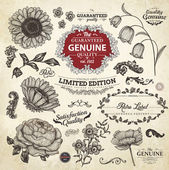 Vector set: calligraphic design elements and page decoration Premium Quality and Satisfaction Guarantee Label collection with vintage engraving flowers
