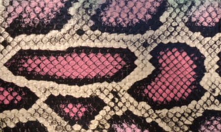 Snake skin texture...