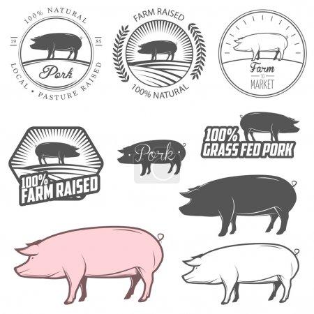 Set of pork labels, badges and design elements