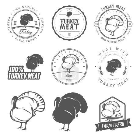 """Illustration pour Ensemble d """"étiquettes, de timbres et d"""" éléments de design premium pour la viande de dinde - image libre de droit"""