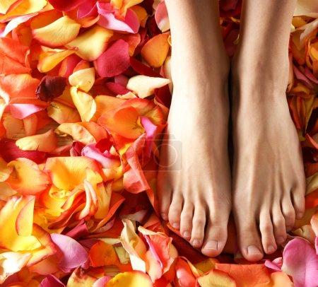 Photo pour Compositions Spa de jambes féminines sexy et la plantation de différents pétales - image libre de droit