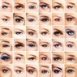Collection of many female eyes with a different ma...