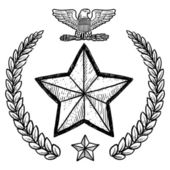 US Army military insignia