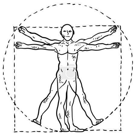 Vitruvian man sketch