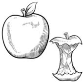 Apple and apple core sketch