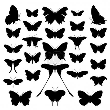 Illustration for Butterfly silhouette set. Vector. Butterflies icon collection background. - Royalty Free Image