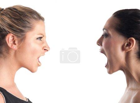 Photo pour Femmes criant mutuellement sur fond blanc - image libre de droit