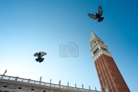 San Marco square and Campanile. Venice, Italy