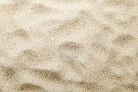 Sand texture. Beach background. Top view. Copy spa...