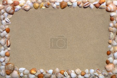 Photo for Sandy background with seashells frame - Royalty Free Image