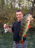 Fishing scene. Perch