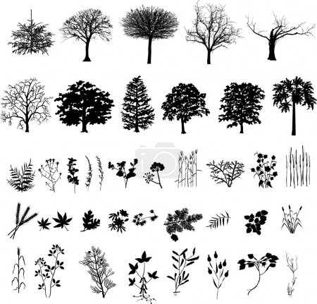 Illustration for Trees, plants and flower, black silhouette, vector - Royalty Free Image