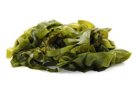 Photo pour Algues sur fond blanc - image libre de droit