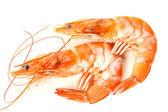Vařené krevety