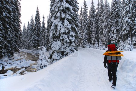 Man goes through the woods with snowshoes