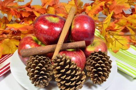 Cortland apples on display