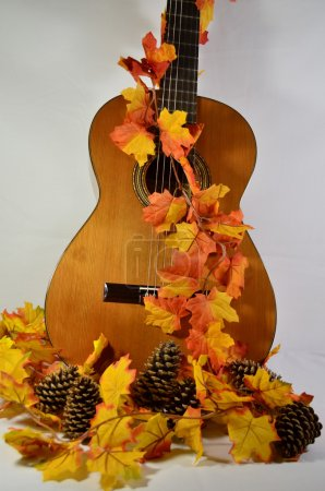 Guitar and Autumn Leaves