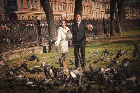 Photo pour Portraits de mariage en plein air dans le parc en été - image libre de droit