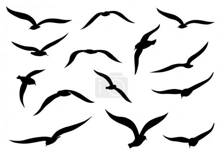 Illustration for Seagull silhouettes - Royalty Free Image
