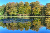 Pond with autumn trees on the Veluwe at St. Hubertus Hunting Lodge, Netherlands