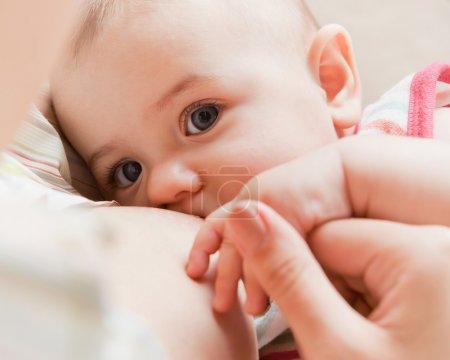 Photo pour Mère s'en soucie. Allaitement bébé . - image libre de droit