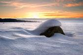 Stone under snow