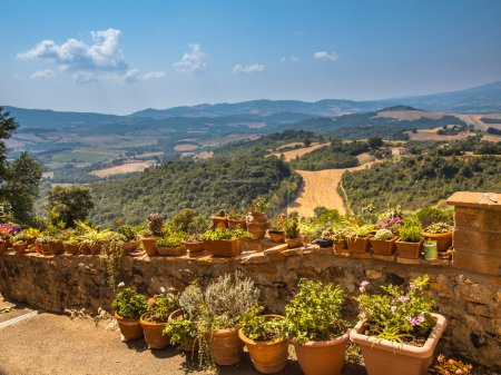 View over Tuscany Hilly Landscape with Pots of Flowers along the