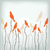 paradise birds on the branches vector