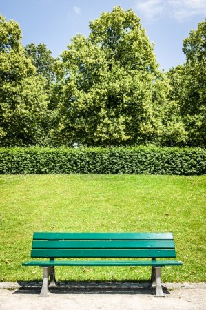 Photo for Wooden park bench at a park - Royalty Free Image