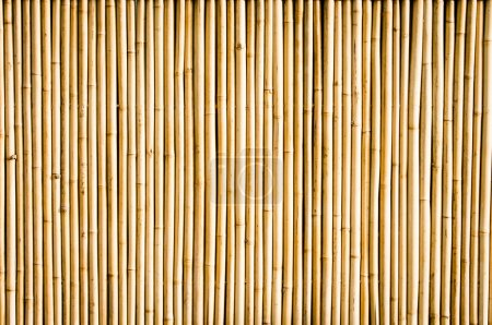 Photo for Nice bamboo pattern - fence close-up - Royalty Free Image