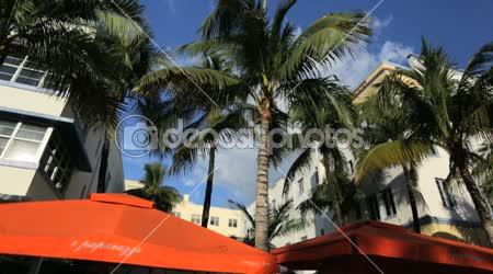 Jungle-sziget Dél-miami beach