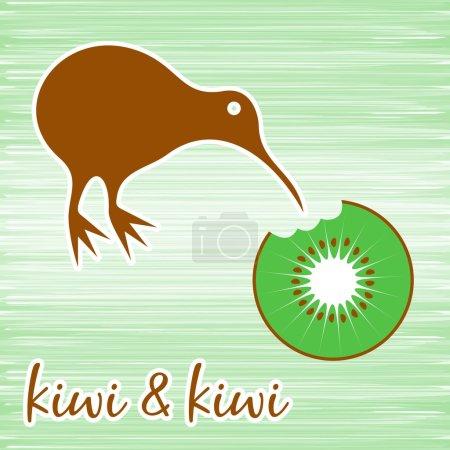 Kiwi bird eating kiwi fruit on green background...