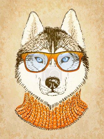 Illustration for Husky Dog. Vector illustration, eps10. - Royalty Free Image