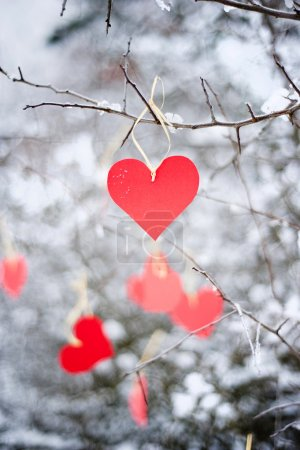 Photo for Red paper heart is hanging on the winter tree - Royalty Free Image