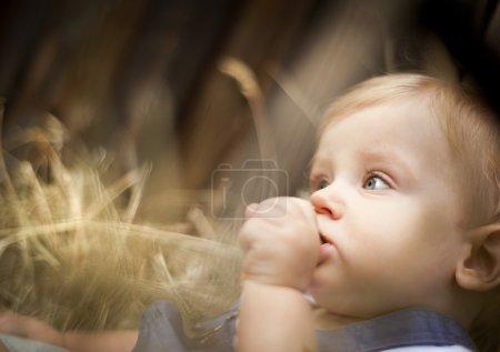 Photo pour Petit garçon est assis dans le panier en bois - image libre de droit