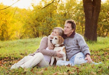 Photo pour Couple de personnes âgées à pied leur chien beagle dans Campagne automne - image libre de droit