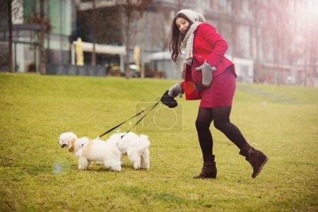 Winter portrait of pregnant woman walking dogs