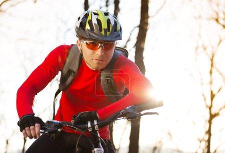 Photo pour Cycliste homme équitation VTT sur le sentier en plein air dans la forêt d'automne - image libre de droit
